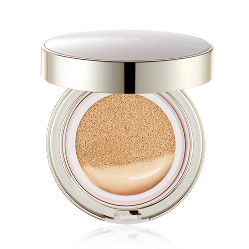 SAAT INSIGHT All Day Fixer Cushion