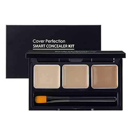 the_SAEM_Cover_Perfection_Smart_Concealer_Kit_4.2g